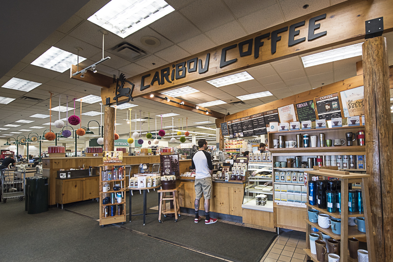 Caribou Bloomington