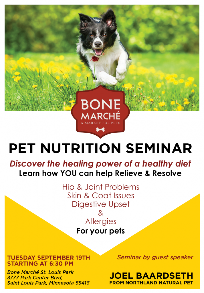 Bone Marche September Seminar Flyer