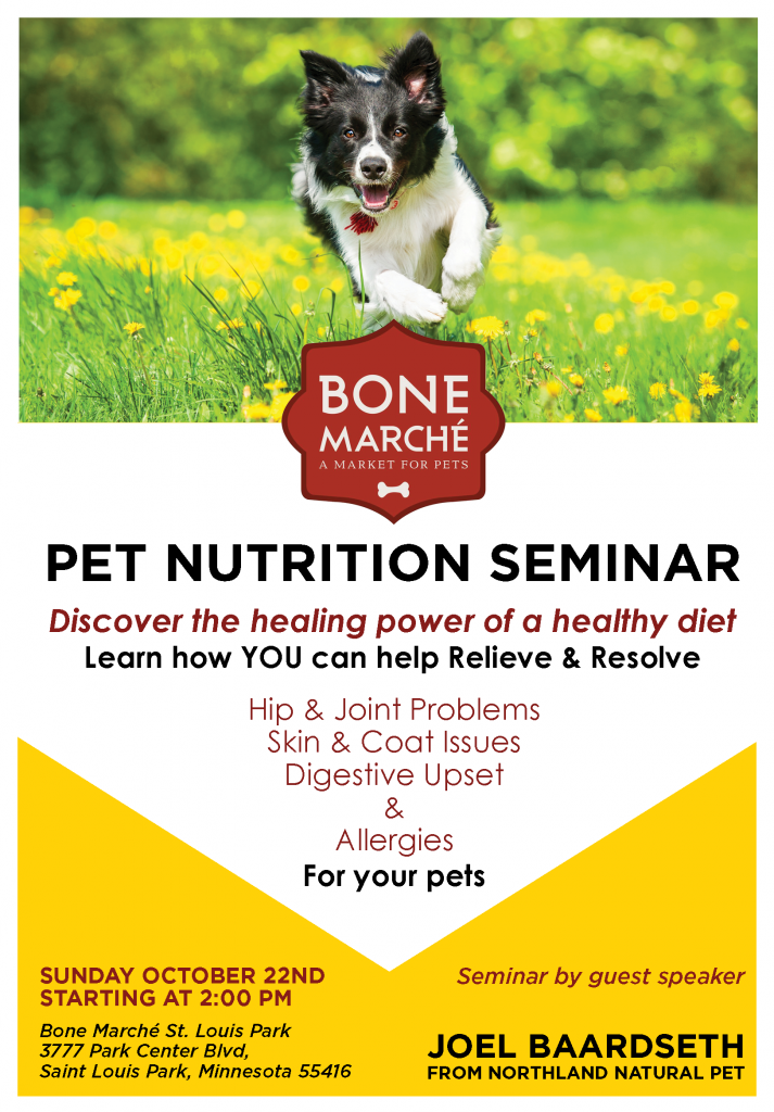 Bone Marche October Seminar Flyer
