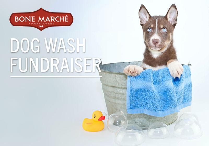 DogWashFundraiser2
