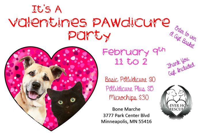 Feb 19 Furever Home Pawdicure