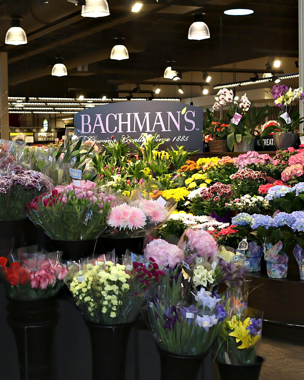 Bachmans