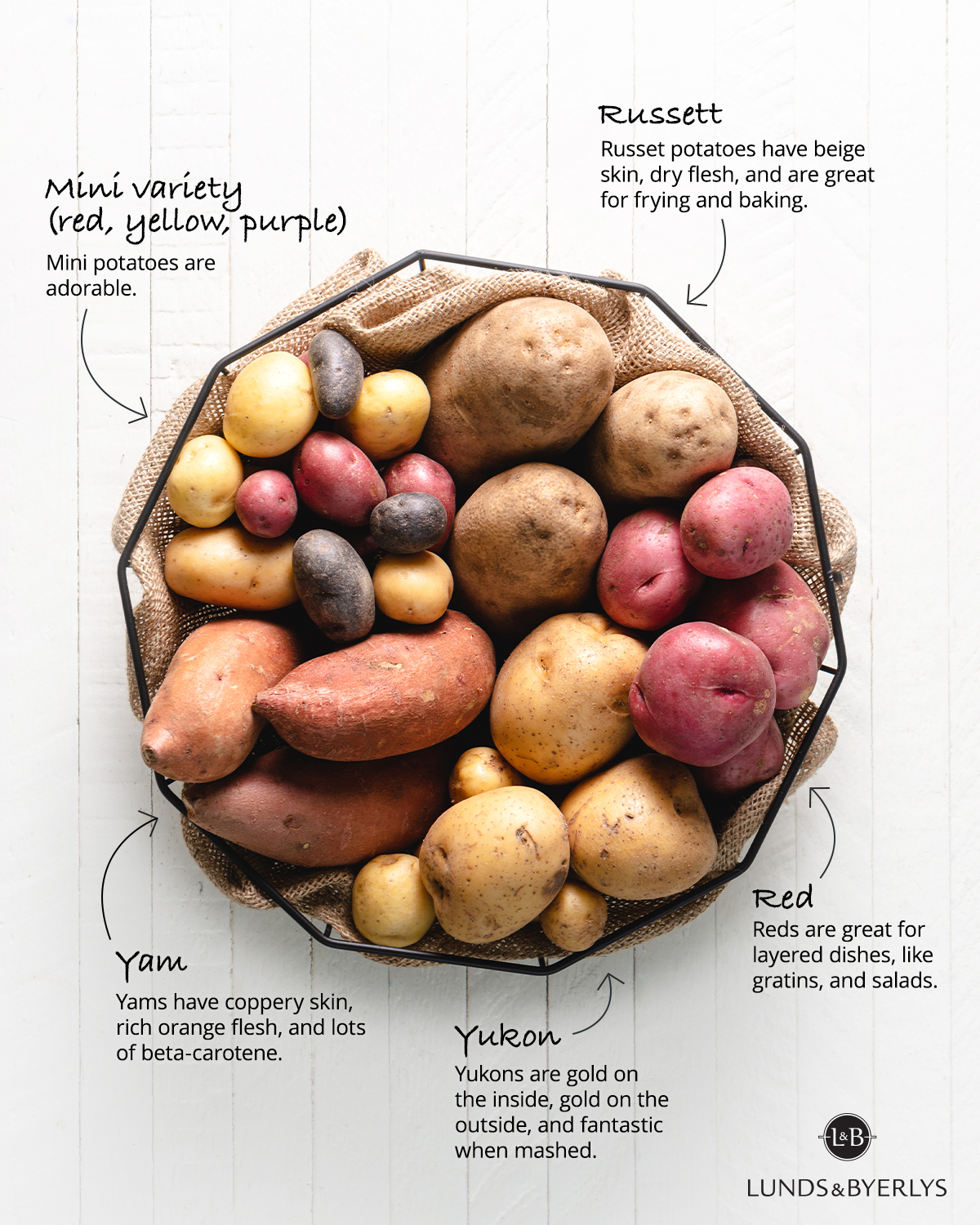 Potato Guide