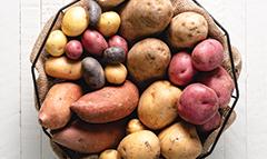 L&B Potato Guide