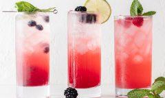 Berry Hard Seltzer – 3 Ways